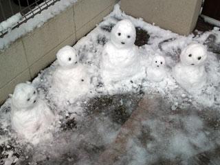 雪だるまたち